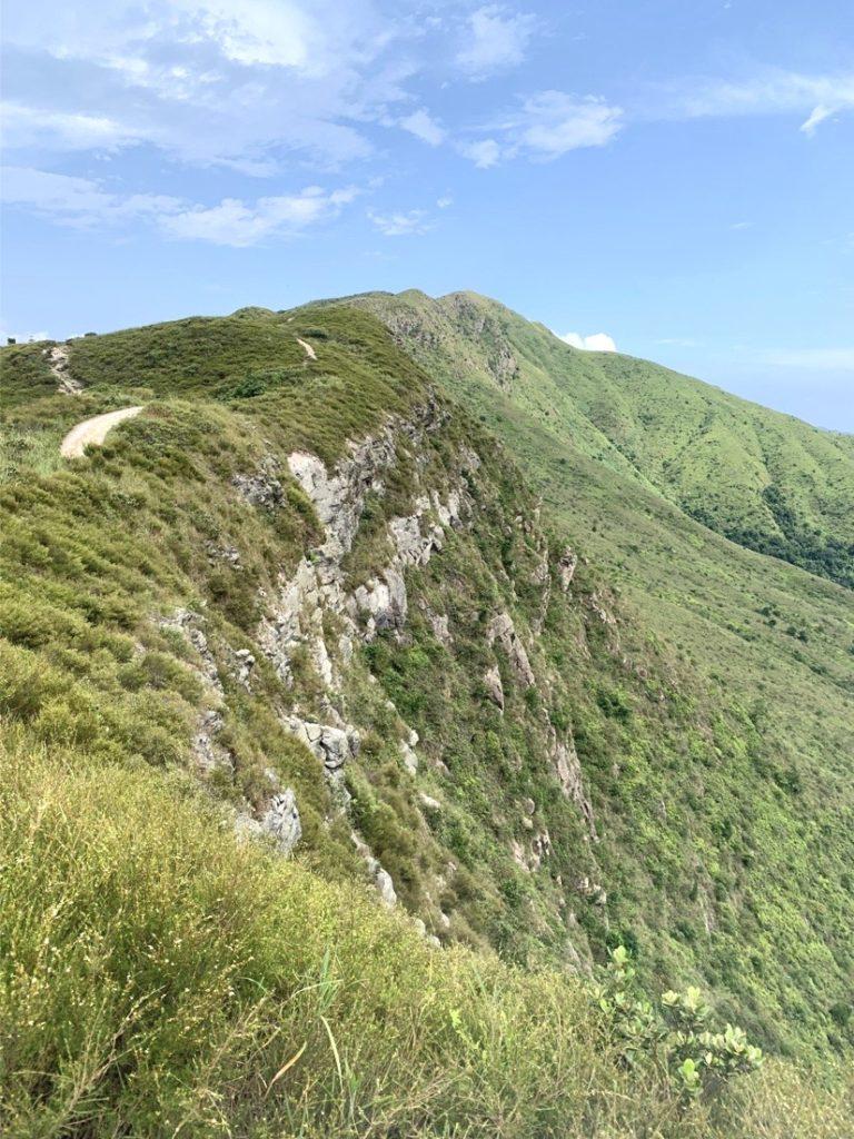 HKウィルソン山美2