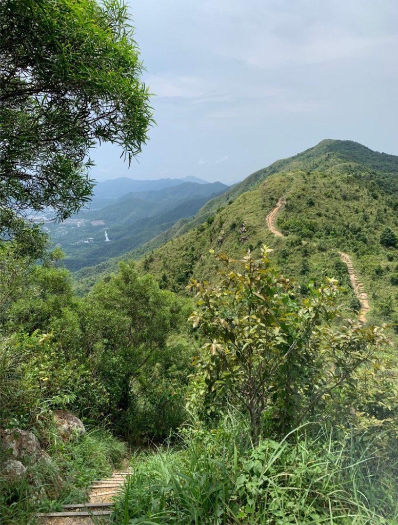 HKマクリホース八仙嶺前山
