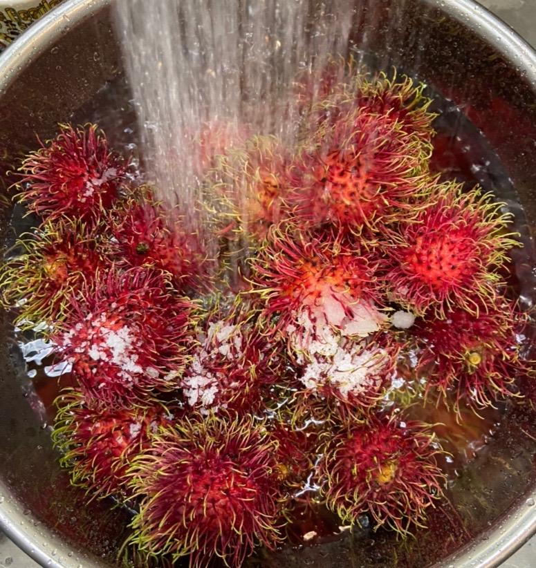 ランブータン洗う