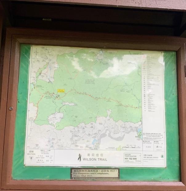 HKウィルソンsec9地図