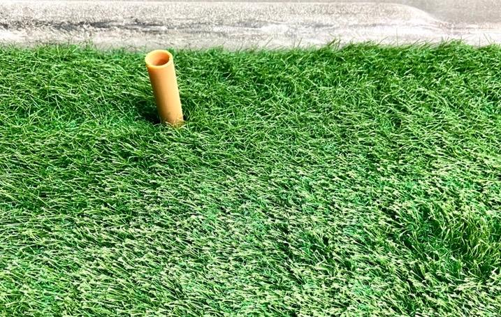 オリンピックゴルフ芝