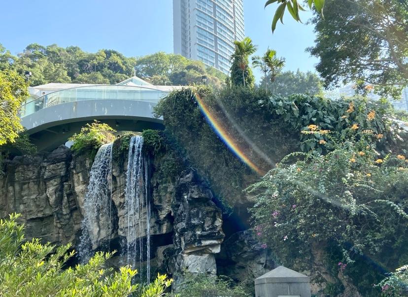 香港公園散歩温室