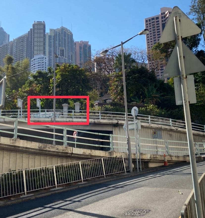 香港動植物もうすぐ