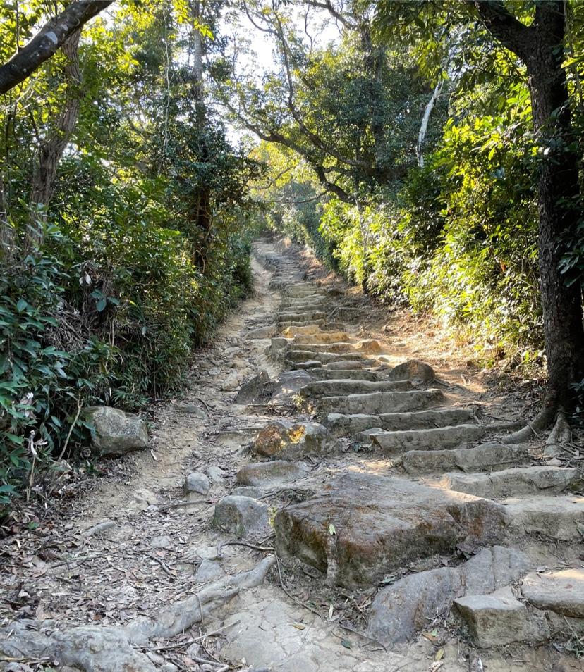 ハイジャンクピーク階段