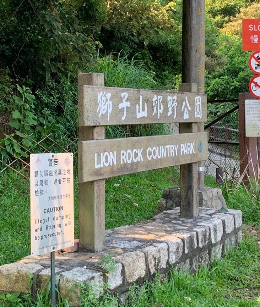 ライオンロック3