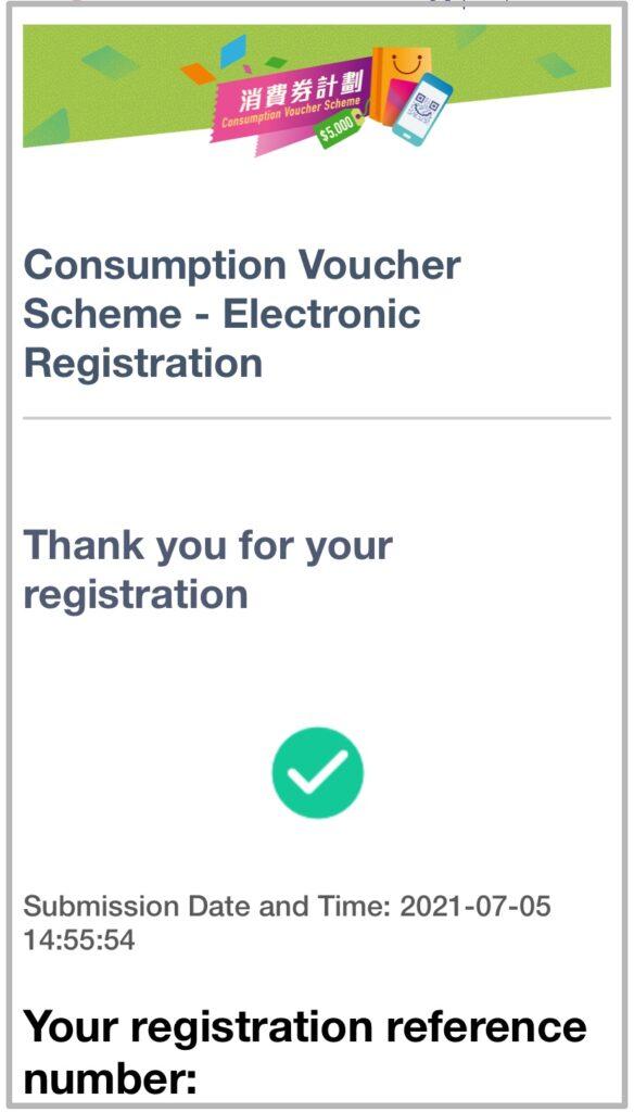 電子消費券29