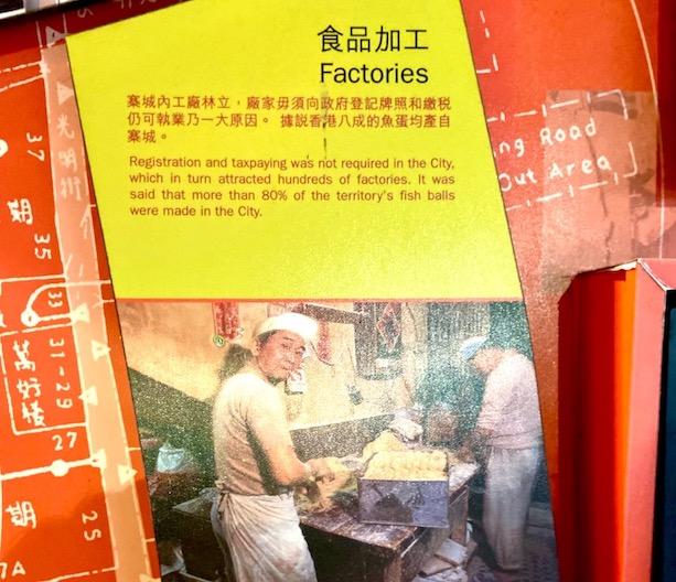 九龍城公園魚